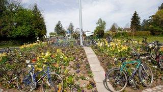 Après avoir décoré Morges, les vélos du Tour seront offerts en Afrique