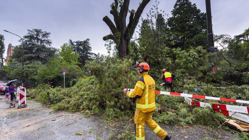 Le canton de Genève a été particulièrement touché par les vents violents.