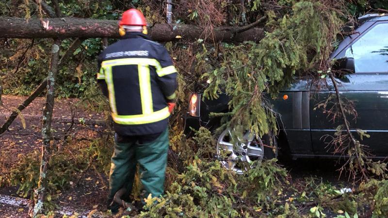 District de Morges: deux arbres à terre et des pompiers très sollicités