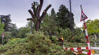 La Suisse romande secouée par la tempête