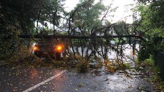 La Côte: chutes d'arbres, inondations, les pompiers sur tous les fronts