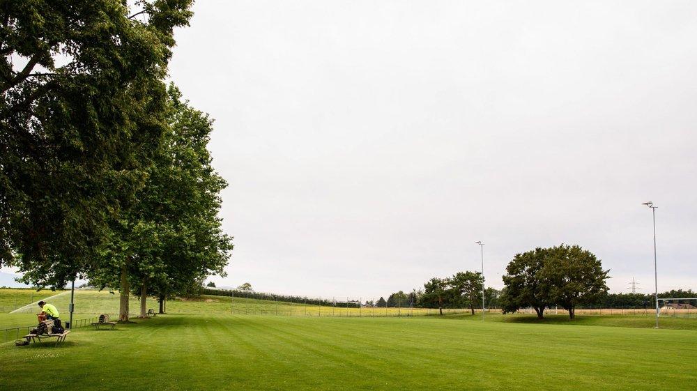 La commune de Founex fera tout pour préserver les arbres qui séparent les deux terrains.