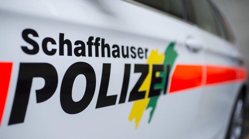 La police schaffhousoise a interpellé l'homme qui tirait des coups de feu depuis son jardin à Stein am Rhein. (Illustration)