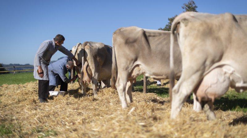 Les paysans veulent agir, d'une part pour survivre et d'autre part pour réduire leurs émissions de gaz à effet de serre (illustration).