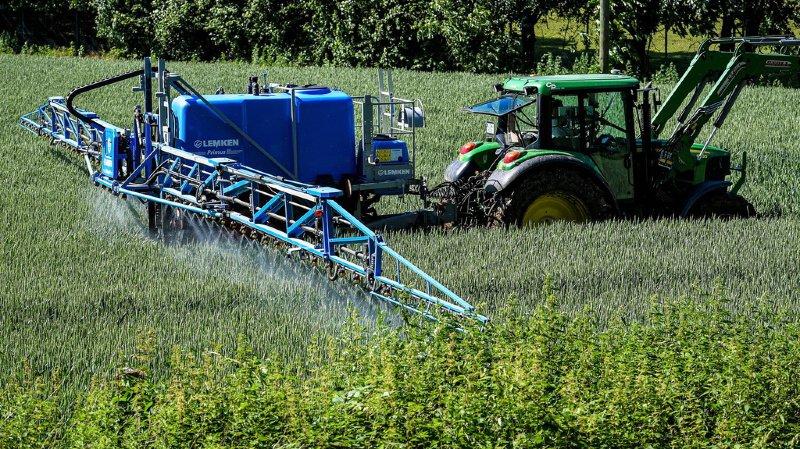 Pesticides: l'Autriche devient le premier pays européen à interdire le glyphosate