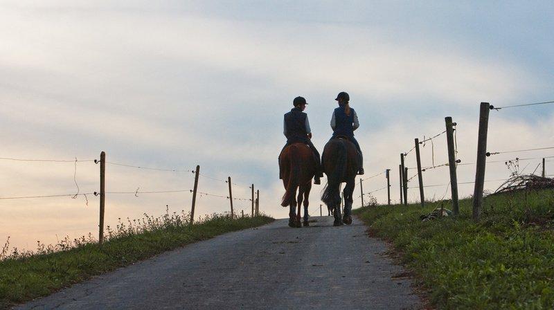 Berne: une femme est décédée après avoir fait une chute à cheval à Graben