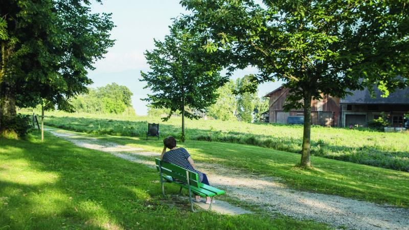 Les alentours de Gland regorgent de petits chemins champêtres parfaits pour la balade.
