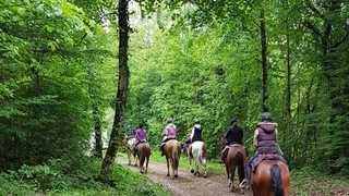 Les balades à cheval, un loisir nature encore peu commun