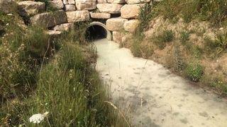 Nyon: les eaux du Corjon sont-elles polluées?
