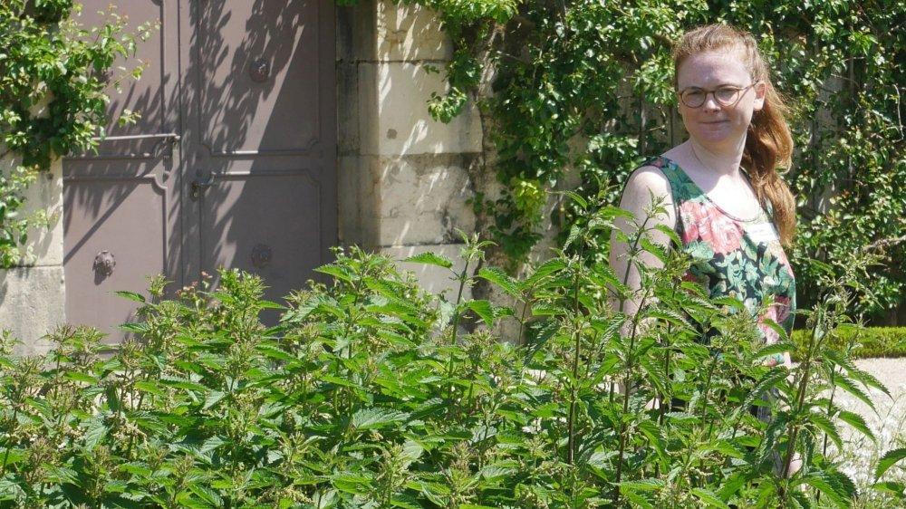 """""""La Ballade des plante en balade"""" est l'un des projets fortement ancrés dans le territoire local."""