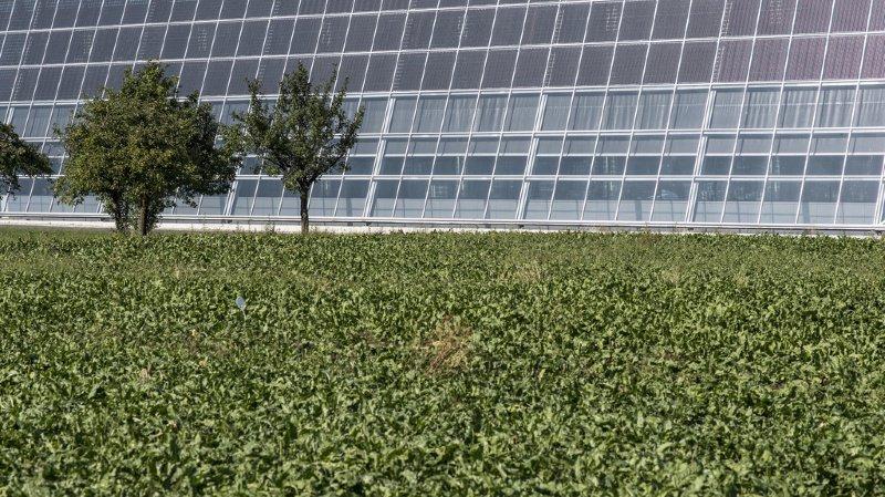 Construction: les cantons n'en font pas assez pour diminuer l'impact climatique des bâtiments