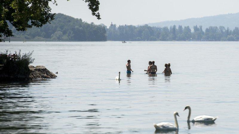 Les baigneurs peuvent à nouveau nager en toute quiétude.