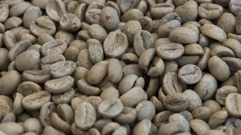 Le café, vital ou pas pour la survie des Suisses? Le Conseil fédéral pense que non