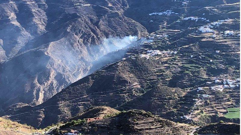 """L'incendie qui a touché 1500 hectares sur l'île de Grande Canarie est désormais """"circonscrit"""". (archives)"""