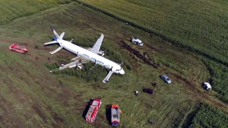 Russie: un Airbus avec 233 personnes à son bord atterrit d'urgence dans un champ de maïs