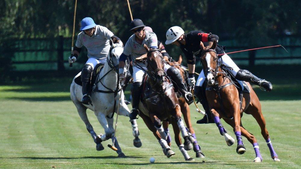 La journée dominicale du Polo Masters a réuni près de 5000 spectateurs.