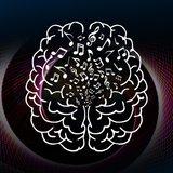 Le cerveau enchanté