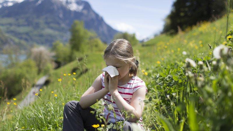Les personnes allergiques devraient profiter de la pause pollinique et commencer une désensibilisation. (illustration)