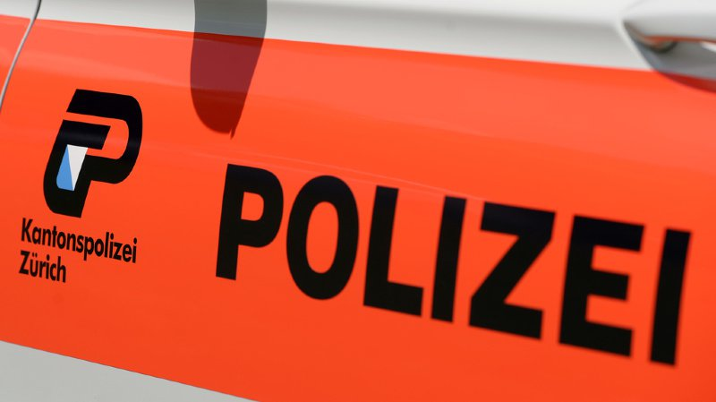 Il a été arrêté et interrogé par les services de police pour mineurs avant d'être remis au juge des mineurs.