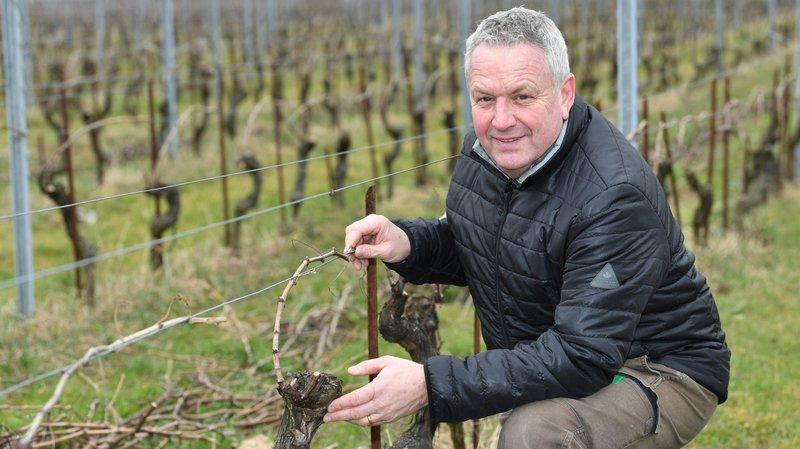Mondial des pinots: les vins de La Côte valent de l'or