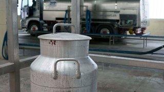 Gros accident dans l'industrie du lait