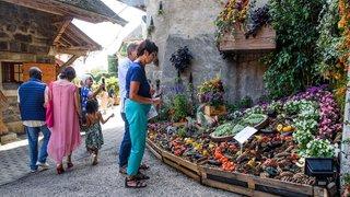 Duillier: fréquentation mitigée pour les Floralies