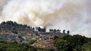 Espagne: un incendie incontrôlable sur l'île de Grande Canarie, 5000 personnes évacuées