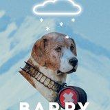 Barry – chien de légende