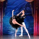 Le Lac des Cygnes - Ballet en 4 actes
