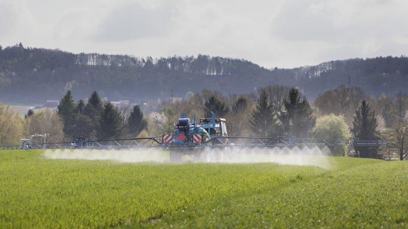 L'Allemagne va interdire l'utilisation de glyphosate dès 2024. (ILLUSTRATION)