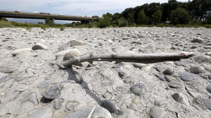 Paysans en souffrance face à la sécheresse