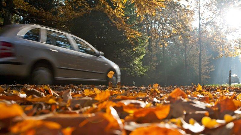 L'automne est une saison particulièrement risquée pour les automobilistes. (Illustration)
