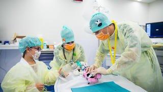 Morges: opération spéciale doudous à l'hôpital