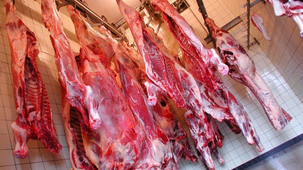 C'est à l'abattoir de Rolle que des éleveurs de la région mènent leurs bêtes pour la vente directe.