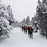 Tzoumaz Trail Banc
