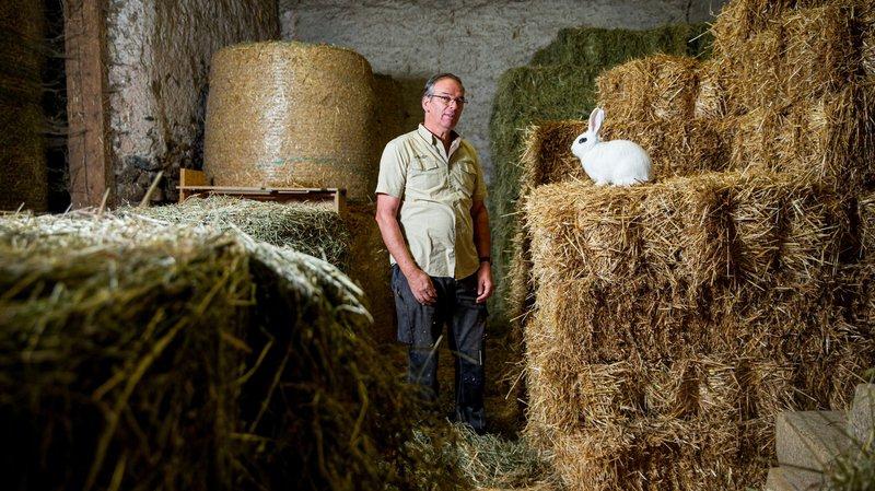 Etoy: ces éleveurs vous attendent, ne leur posez pas un lapin!