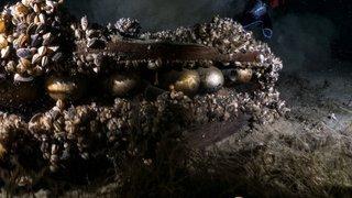 Genève: des centaines de tonnes d'explosifs gisent au fond du Petit Lac
