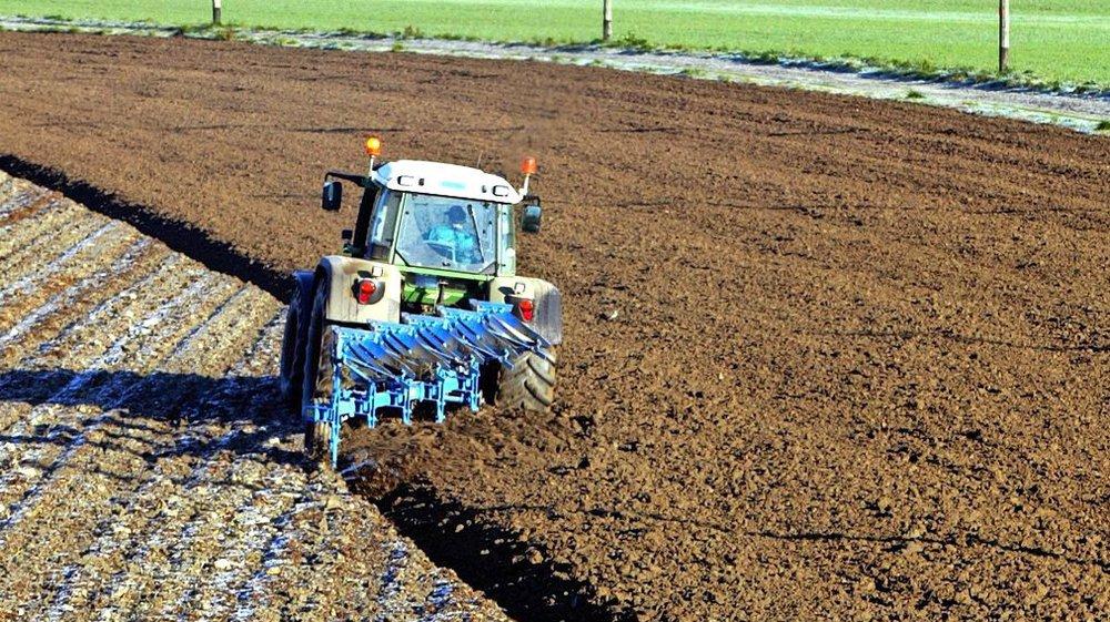 Le stockage du CO2 dans les terres est un processus naturel lorsque le sol n'est pas appauvri par une agriculture intensive.
