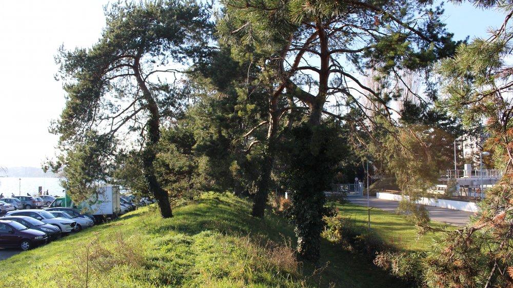 A droite, l'actuelle step du Bief. Les futures installations sont prévues côté lac, sur la butte, le parking et une partie du Parc de Vertou.
