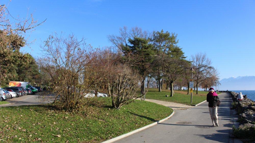Le projet prévoit d'étendre la step en direction du lac, à l'orée du parc de Vertou.