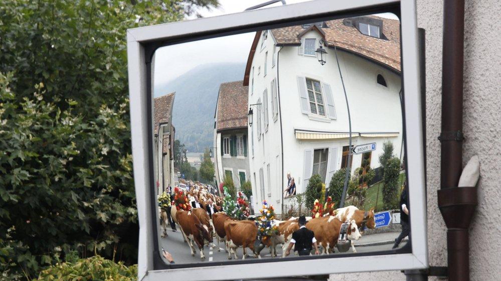 Le temps n'est plus aux vaches grasses pour les finances communales de Chéserex.