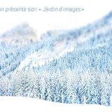 """Exposition """"Jardin d'images"""" (photos sur bois)"""