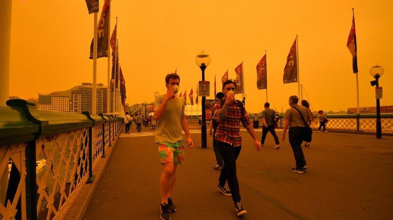 Incendies: l'Est de l'Australie asphyxié par la fumée