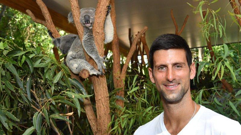 Novak Djokovic participe à la Coupe ATP à Brisbane.