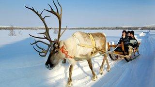 Evasion: enchantements nordiques