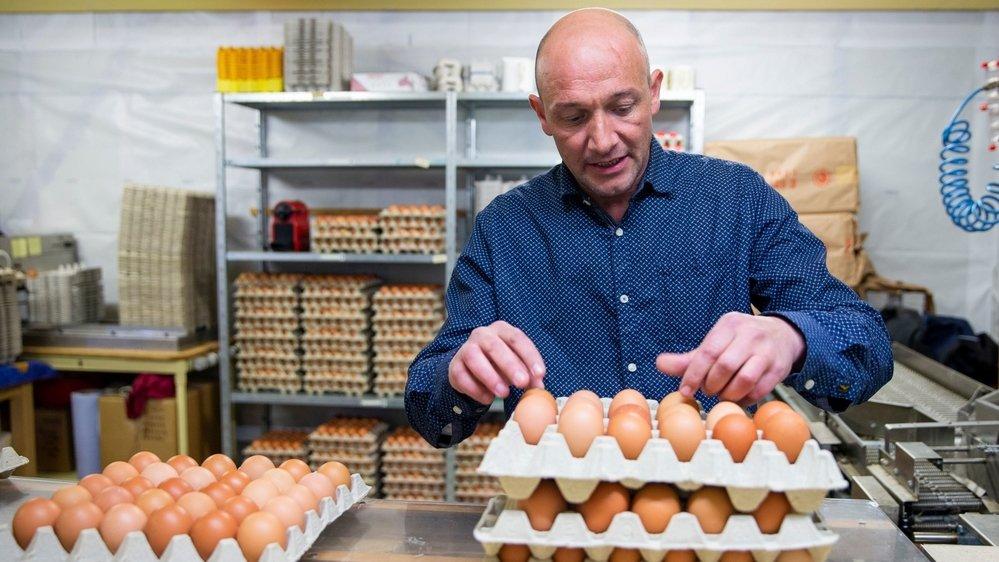 Christian Rebetez prépare ses livraisons. les œufs sont cueillis à la main, triés mécaniquement, puis rangés à la main dans les boîtes.