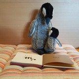 Né pour lire