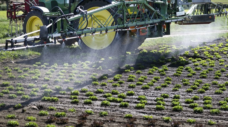 Pesticides: produits à base de chlorpyrifos interdits dès juillet en Suisse