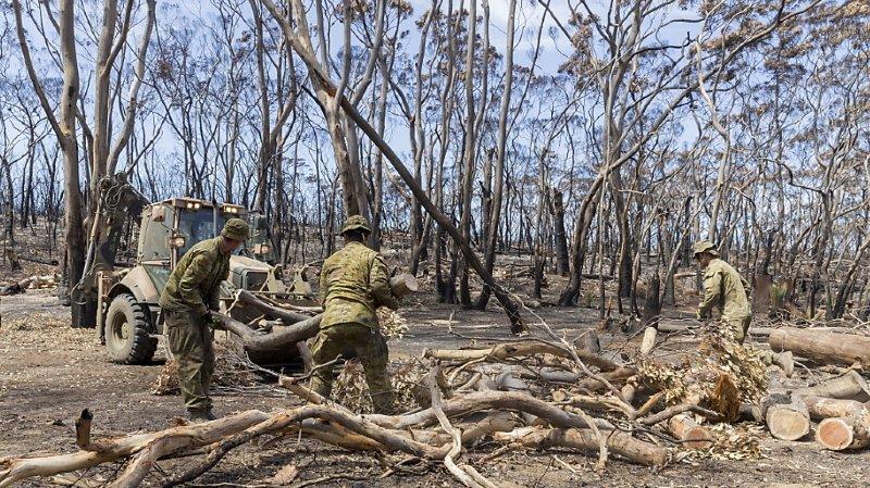 Australie, les incendies sont maîtrisés en Nouvelle-Galles du Sud