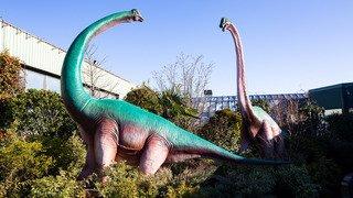 Gland: les dinosaures s'invitent au Garden Centre